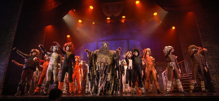 Photo of Cats Cast from dress rehearsal